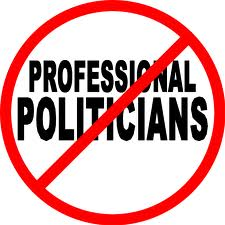 BLOG POST - No Professional Politicans
