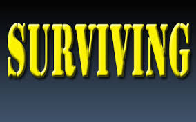 Blog Post - Surviving