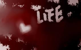 blog Post 1 - Life 1