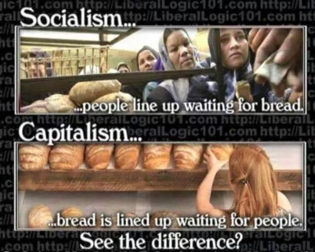 Blog Post 3 - Socialism