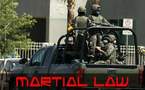 BLOG POST 1 - Martial Law