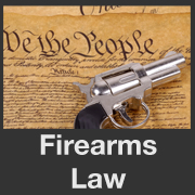 BLOG POST 5 - Gun Laws