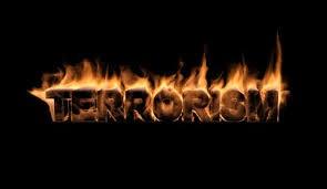 BLOG POST 1 - Terrorism