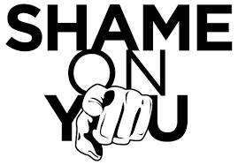 BLOG POST 3 - Shame