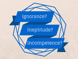 BLOG POST 1 - INeptitude