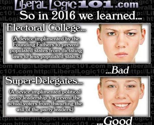 BLOG POST 3 - Electoral College View of Leftis