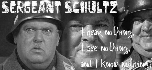 BLOG POST 1 - Sgt Schultz Defense