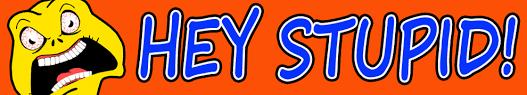 BLOG POST 2 - Hey Stupid